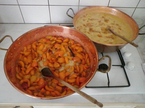 Préparations d'abricots